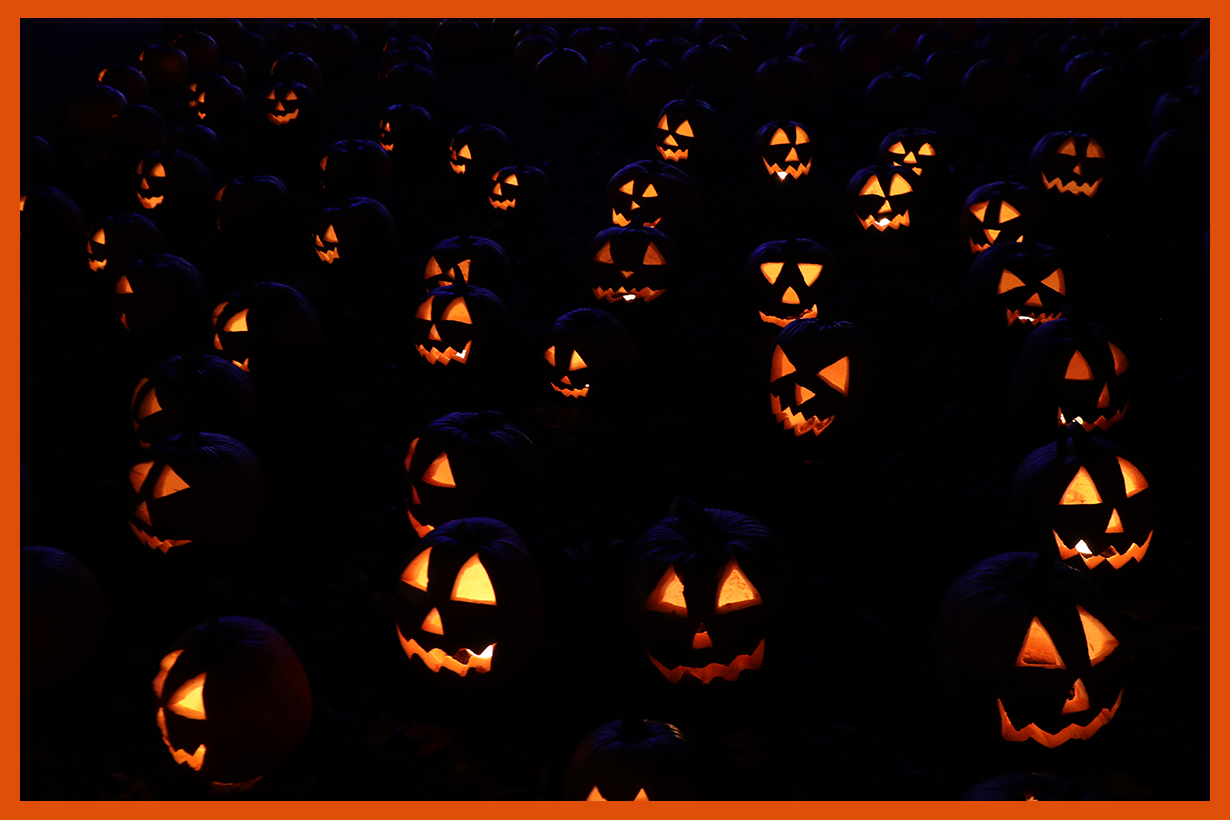 Halloween True story horror story Halloween movies Trick or Treat Michael Myers Stanley Stiers