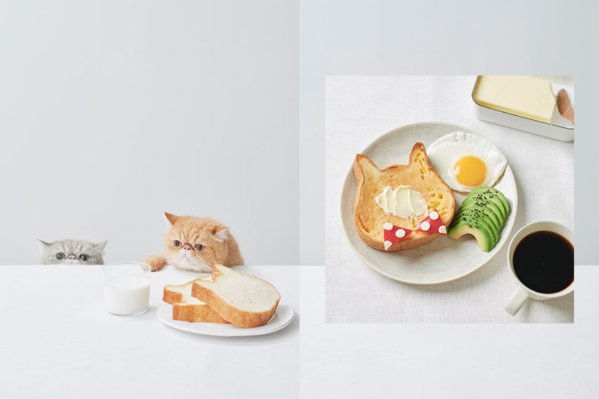 japan Heart Bread ANTIQUE  Neko Neko Shokupan cat toast popspots instagram