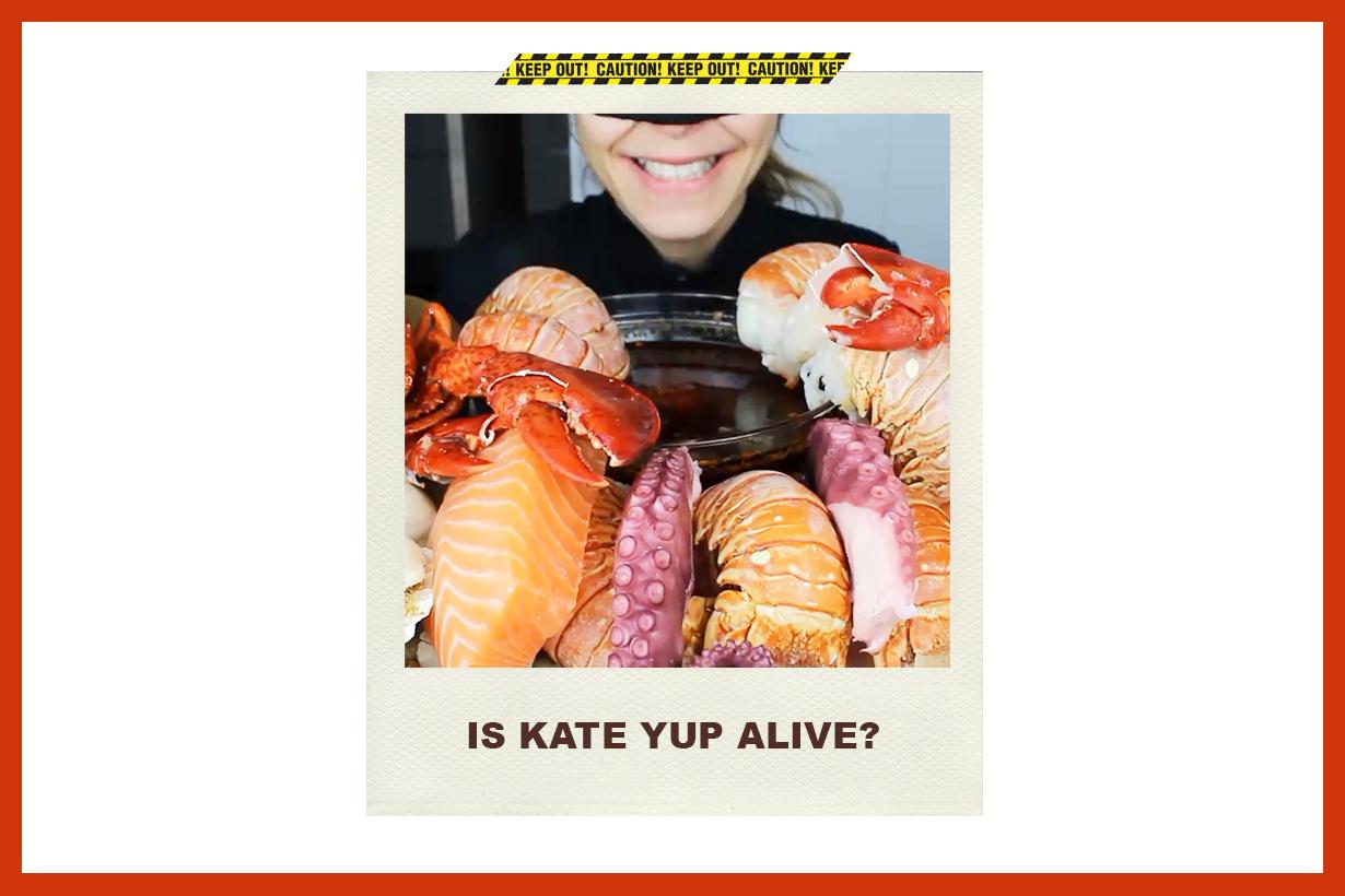 Kate Yup Youtuber Mukbang Internet Rumours Kidnapped Mystery SOS I'll Kill You HELP Netizens psychology