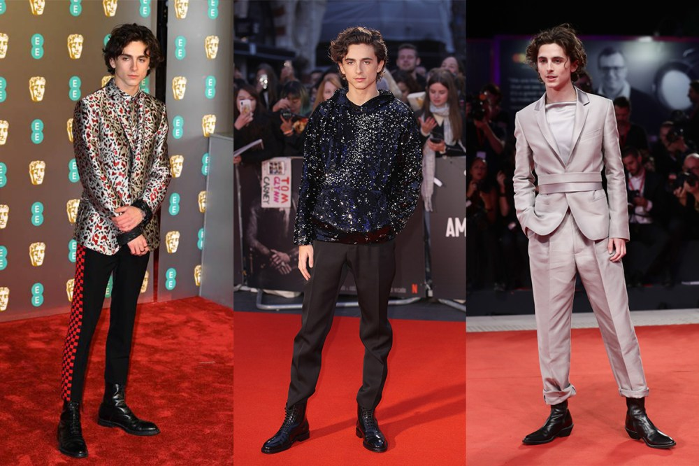 Timothée Chalamet Red Carpet Look