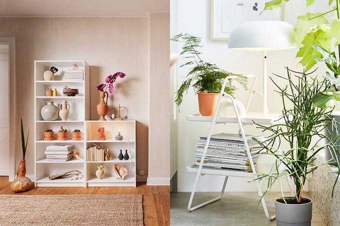 揭開 IKEA 最多人搜尋的商品排行榜,這款超高 CP 值書櫃位居第一!