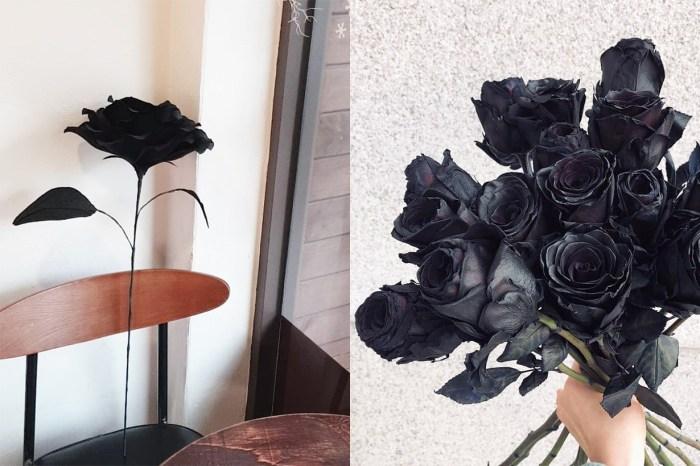 鮮花也有潮流!是什麼原因,讓韓國男生流行送女生黑色玫瑰花?