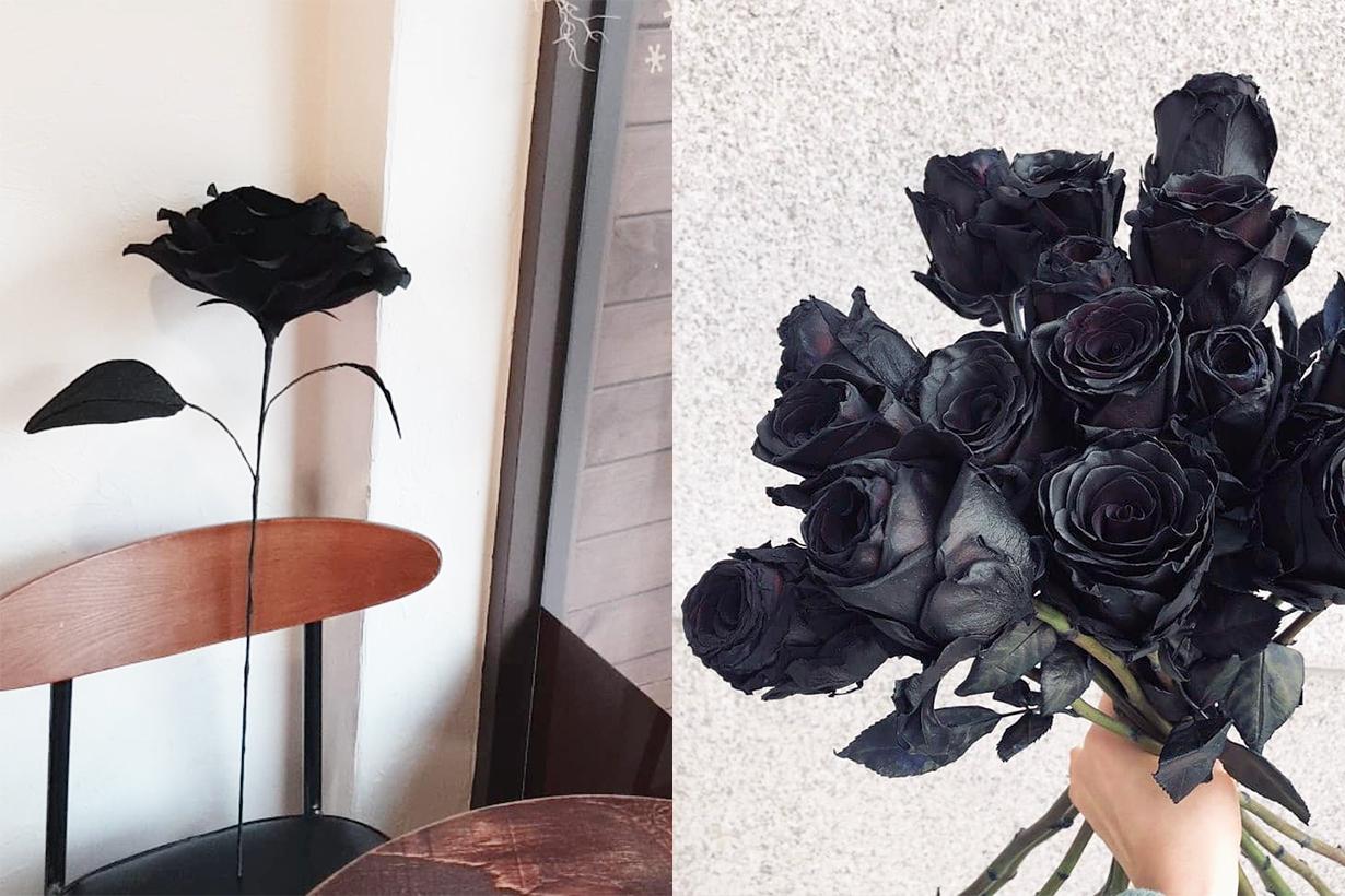 Korean Boyfriends Girlfriends Black Roses trends