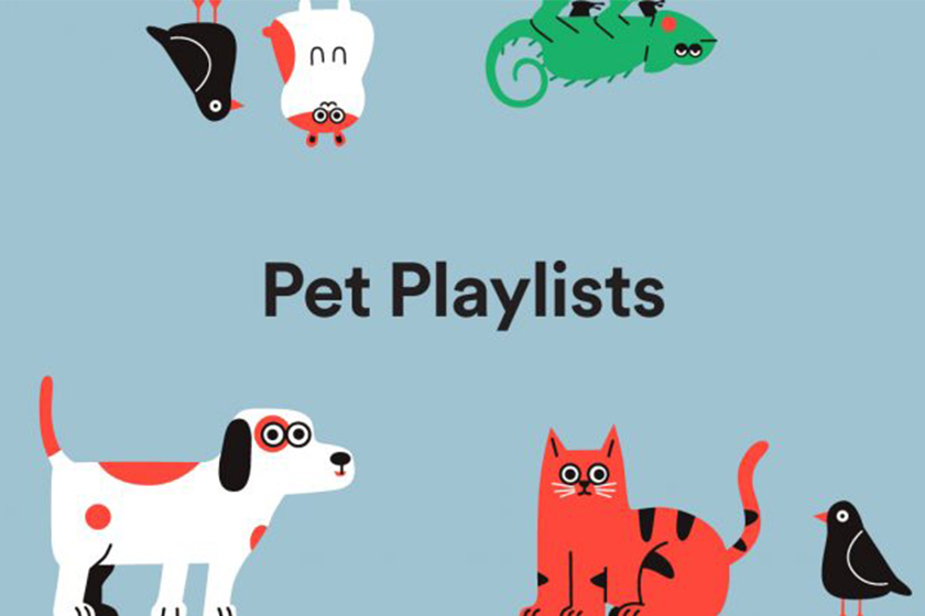spotify for pets playlist function music algorithm