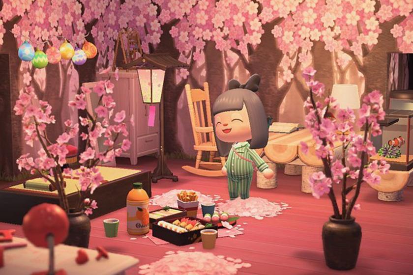 Nintendo Switch Animal Crossing New Horizons House Deco