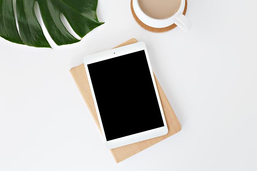 apple ipad mini lower priced info