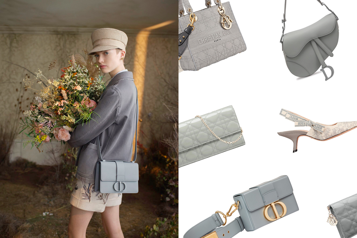 dior grey handbags shoes Gris Trianon ss20
