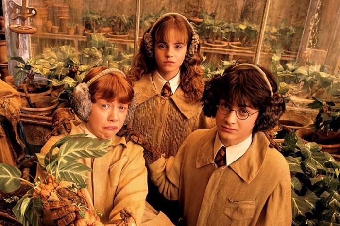 聽 Daniel Radcliffe 說故事!一眾演員為大家讀出《哈利波特》免費有聲書!