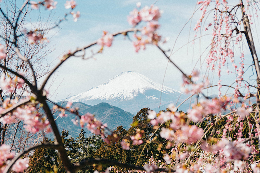 japan mount fuji closed hiking trails 2020 coronavirus