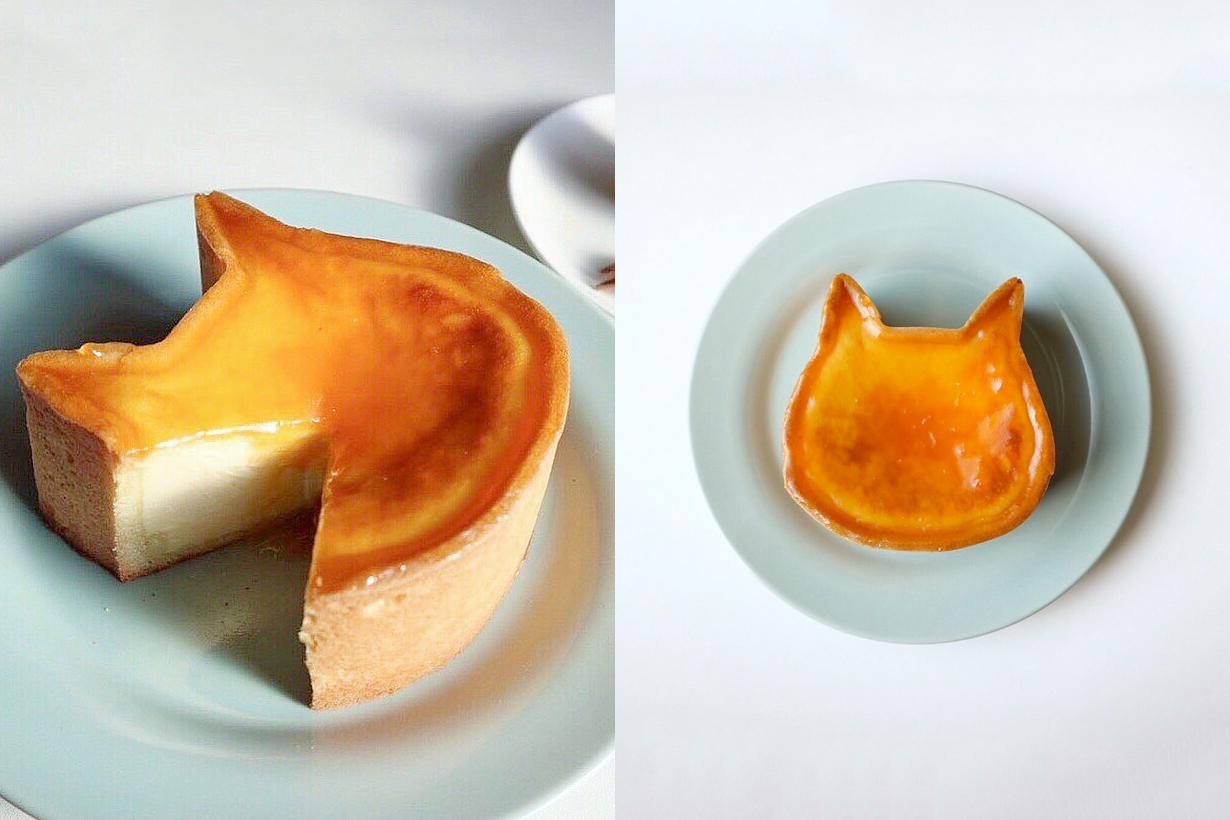 nekoneko cheesecake cat dessert japan