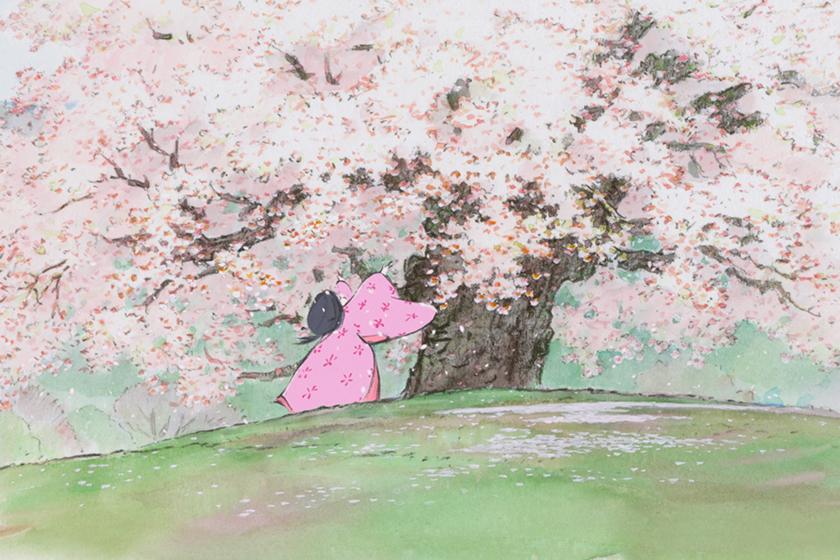 5 ghibli studio Animated Film you must see