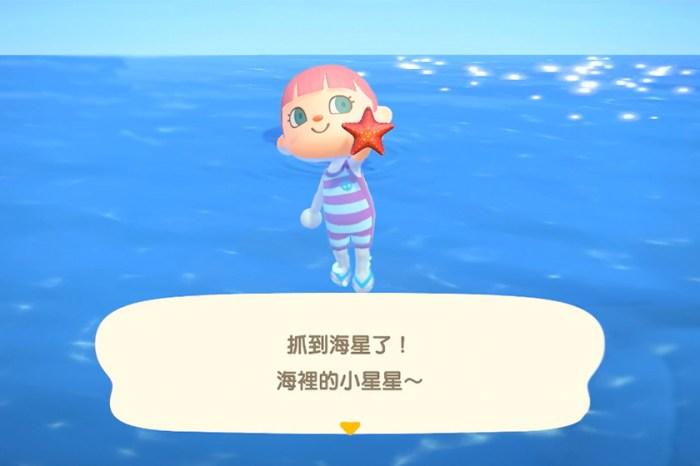 終於可以到海裡游水!《動物森友會》夏季專屬的更新來了!