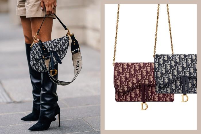Dior 馬鞍包的另一大熱版本,保留經典設計得來更加實用!