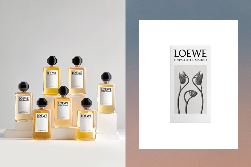 loewe perfume un paseo por madrid set all scents once
