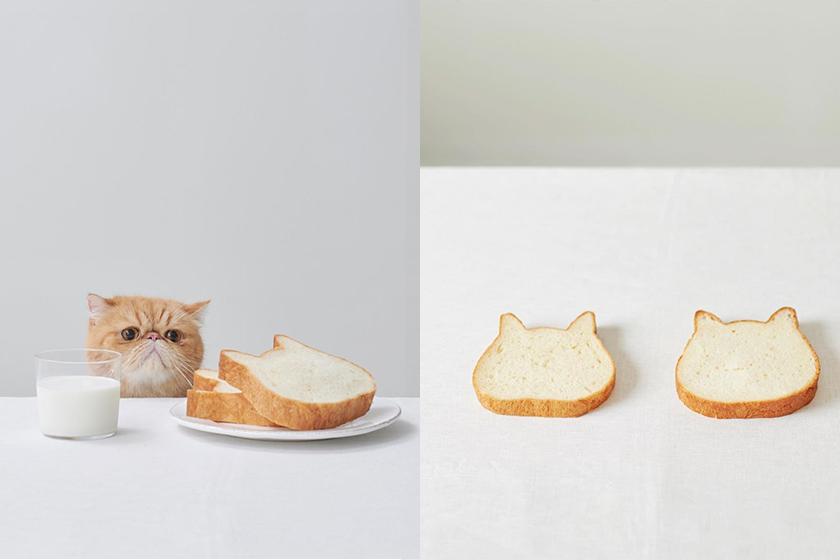 Neko Neko Shokupan cat toast taiwan