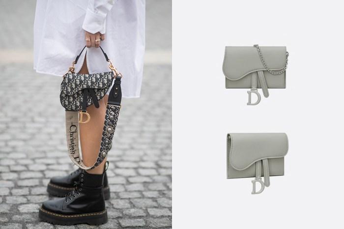沈靜的呢喃美學:Dior 迷你馬鞍包,再新上架這一款啞光灰色調!