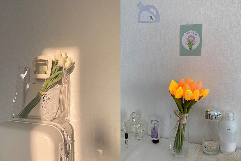 tulip flower lamp Japan brand lifestyle home living