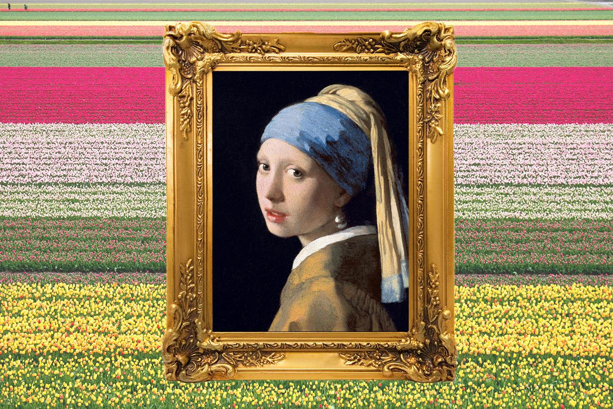 Girl with a Pearl Earring Het meisje met de parel Johannes Vermeer Mauritshuis Painting Colin Firth Scarlett Johansson  Tracy Chevalier Oscar Movie