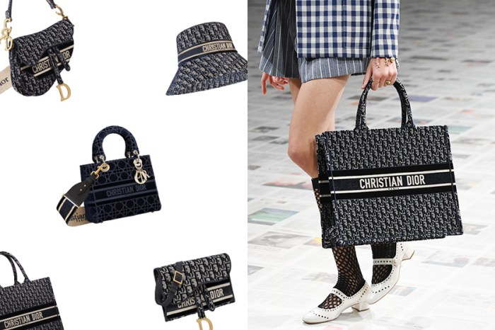 當 Dior 換上新衣,Saddle Bag、Book Tote 經典手袋變得更迷人?