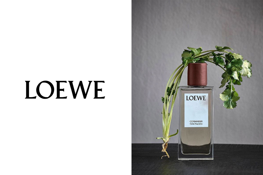 loewe Home Scents collection coriander candles and Home Fragrances jonathan anderson