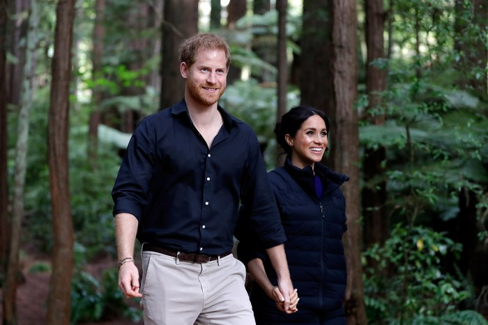 推出新書還不夠?哈利王子和梅根簽約 Netflix,將會推出一系列節目!