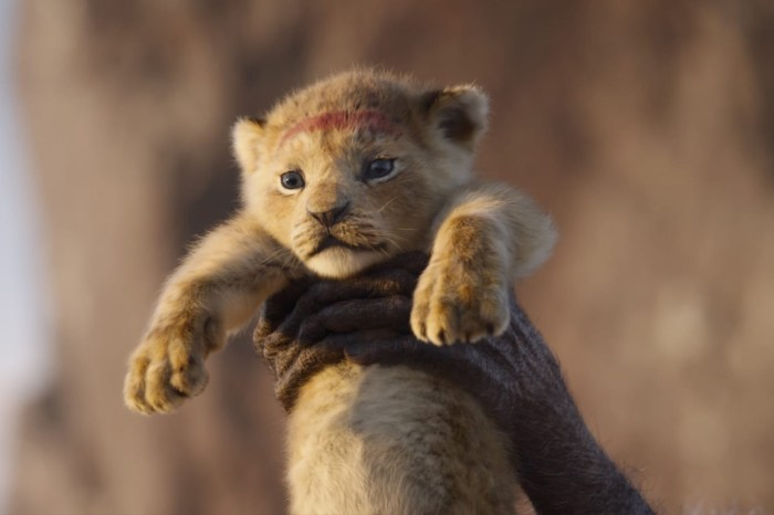 迪士尼確定推出真人版《獅子王》續集,並以牠的故事作主線!
