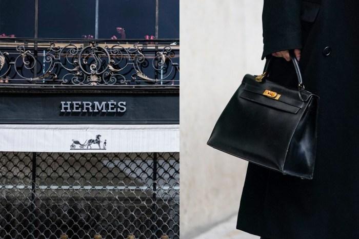奢侈爭議:Hermès 將投資鱷魚養殖場,引起網上一片反彈聲浪!