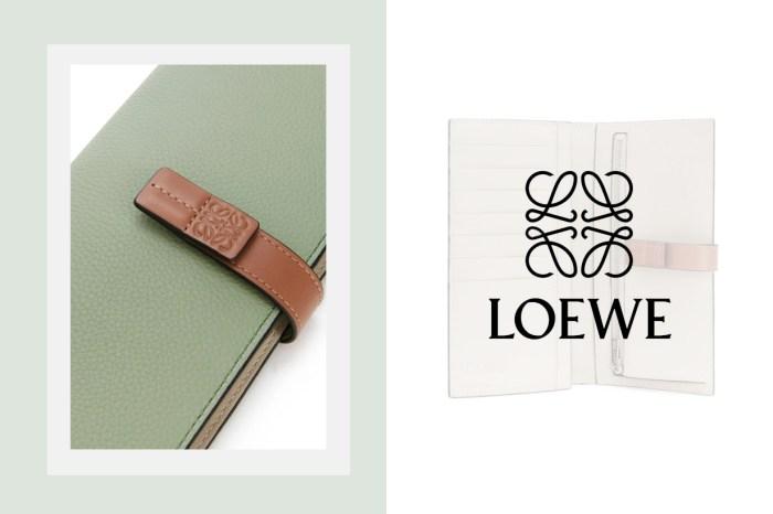 從配色到間隔都完美!正尋找名牌銀包,Loewe 這款是不二之選