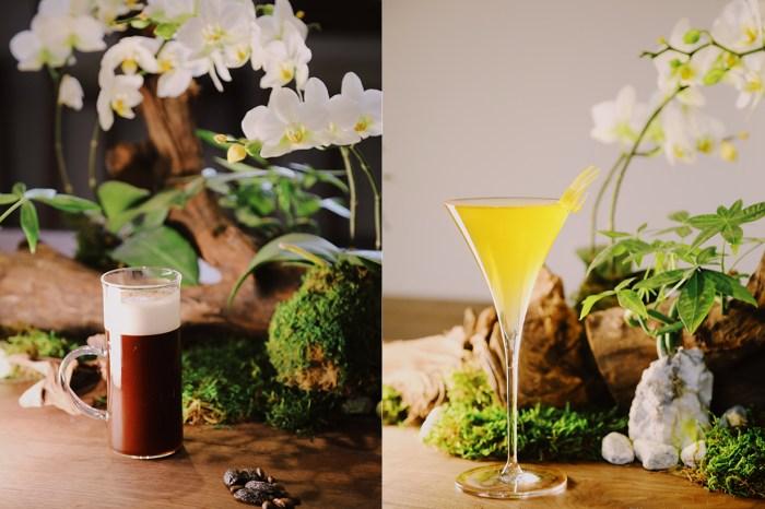 去文青熱點品酒!白蘭樹下於南豐紗廠開設丹丘蒸留所