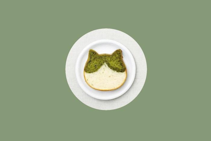 貓咪吐司新口味開放預購:靜岡浜佐園抹茶粉+法國白巧克力!