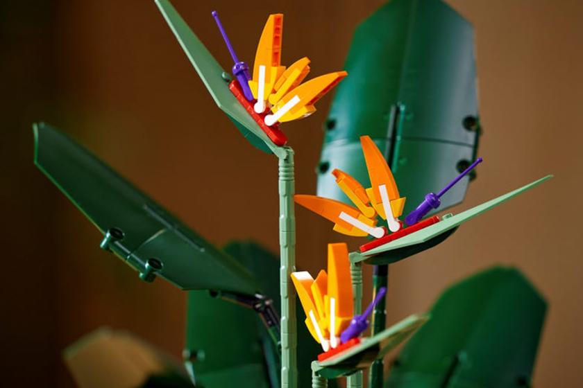 LEGO Bird of Paradise 10289