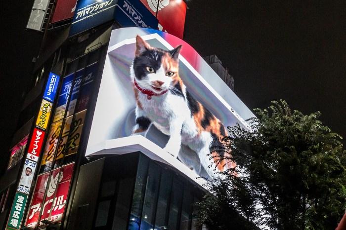 東京街頭建築物上這隻「巨大三花貓」的出現,引起日本女生熱烈討論!