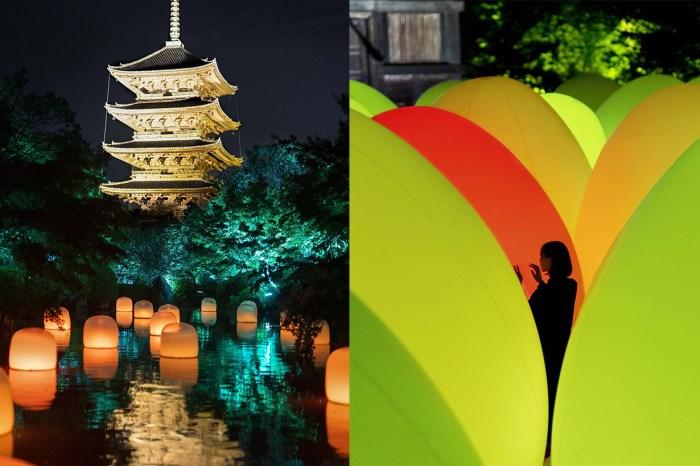 光影互動藝術 teamLab 走進世界遺產:京都「東寺」如夢似幻的光之祭!