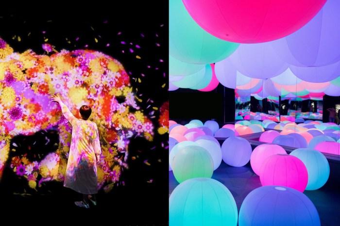不用到日本也能享受,華麗絢爛的 teamLab 互動藝術展即將在台灣登場!