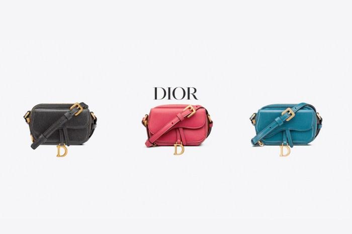 不一樣的 Dior Saddle Bag,這次不到 US$1,000 就能入手!
