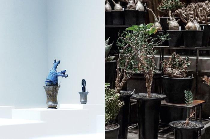 台北城東最熱話題:植栽選品店 + 藝廊,找天逛個不一樣的街!