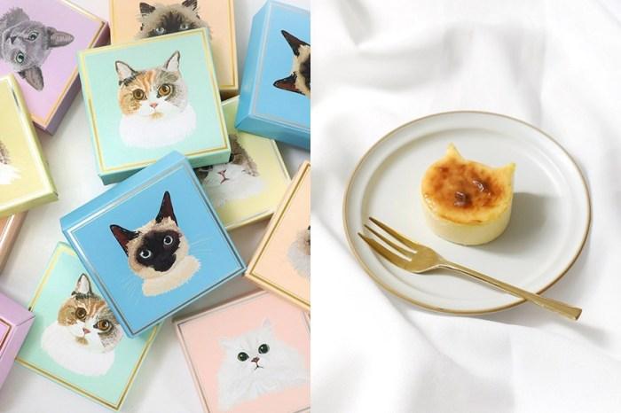 最療癒的四色貓咪蛋糕!東京人氣 Neko Neko Cheesecake 快閃來到台中!