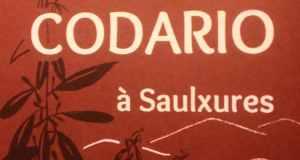 Duo-codario-750x400
