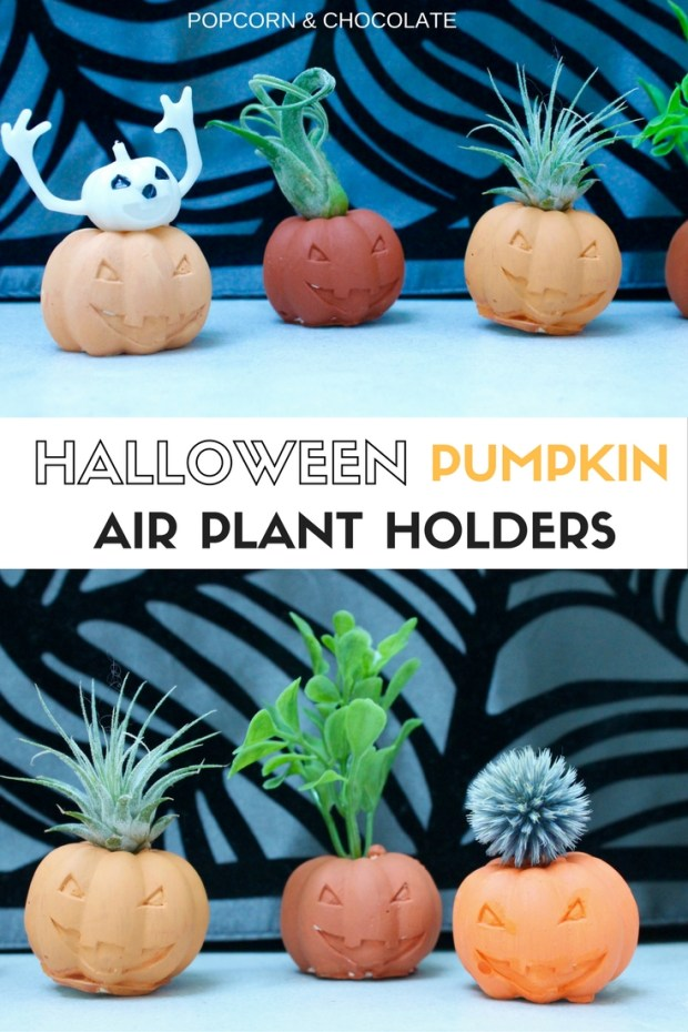Halloween Pumpkin Air Plant Holders | Popcorn & Chocolate