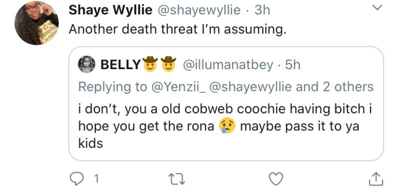 beyonce fans tweet mean things