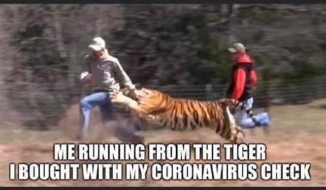 meme about tiger king netflix show