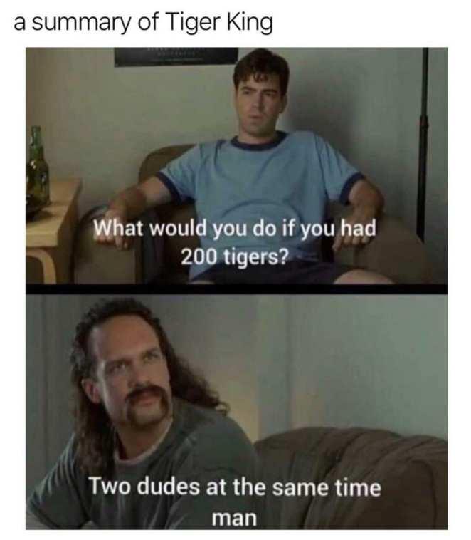 memes about tiger king netflix show