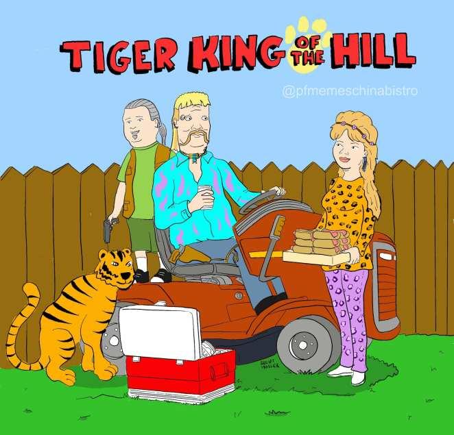 memes tiger king on netflix