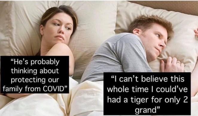 tiger king memes buzzfeed