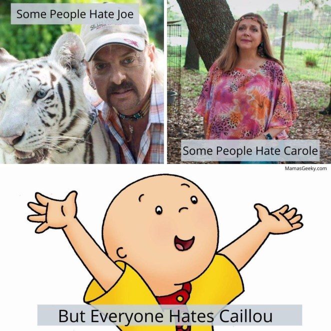 tiger king on netflix memes