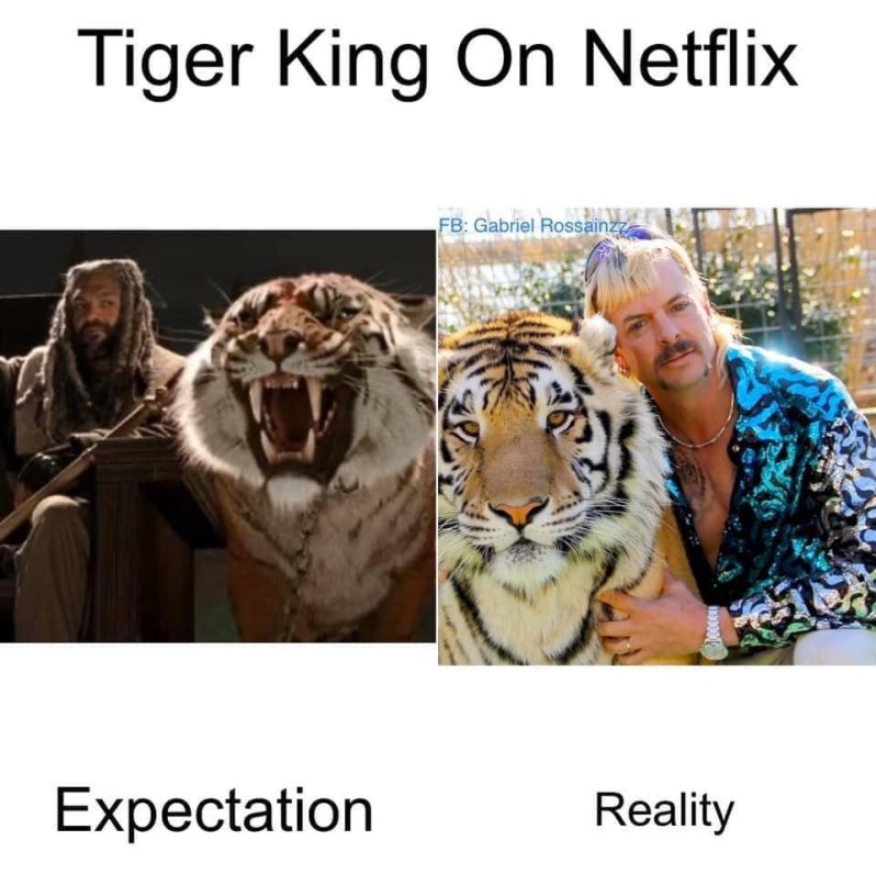tiger king on netflix
