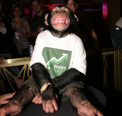 Mikey Vegas disturbing