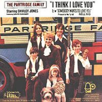 """The Partridge Family, """"I Think I Love You"""""""