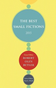 Best Small Fictions 2015