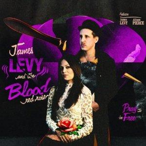 James Levy album